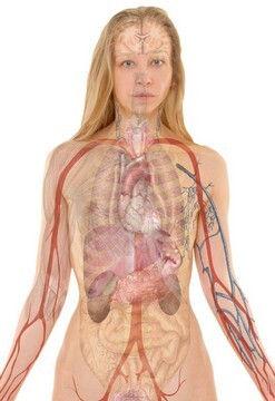 Operation risiken gebärmuttersenkung Gebärmuttersenkung